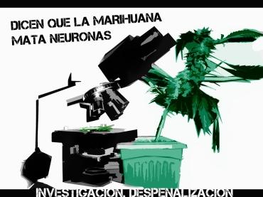cannabis investigación